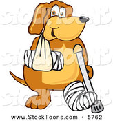 Stock Cartoon of a Hurt Brown Dog Mascot Cartoon Character with an Arm and Leg Bandaged up by Toons4Biz