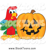 October 16th, 2014: Stock Cartoon of a Macaw Parrot with a Halloween Pumpkin by Toons4Biz