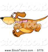 Stock Cartoon of a Panting Brown Dog Mascot Cartoon Character Running Obsessively After Something by Toons4Biz