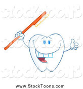 Stock Cartoon of a Tooth Holding a Red Tooth Brush and Thumbs up by Hit Toon