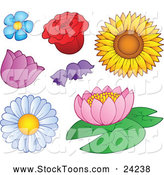 Stock Cartoon of Daisy Rose Sunflower Tulip Bell and Lotus Flowers by Visekart