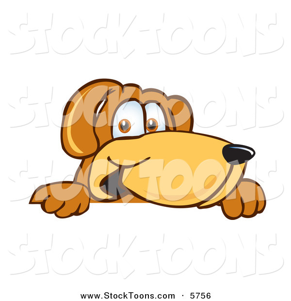 Stock Cartoon of a Happy Brown Dog Mascot Cartoon Character Peeking over a Surface