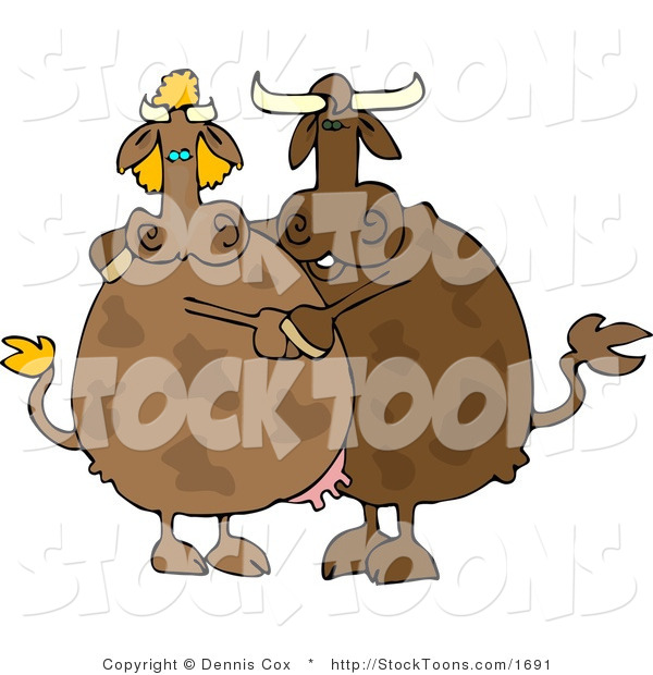 Stock Cartoon of a Male and Female Cows