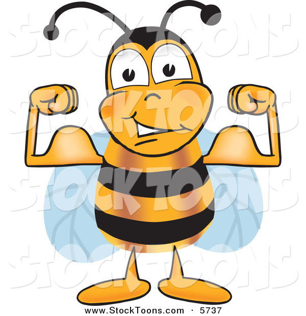 Stock Cartoon of a Strong Honeybee Mascot Cartoon Character Flexing His Arm Muscles