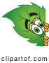 Stock Cartoon of a Eco Friendly Leaf Mascot Cartoon Character Peeking Around a Corner by Toons4Biz