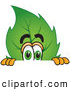 Stock Cartoon of a Eco Friendly Leaf Mascot Cartoon Character Scared and Peeking over a Surface by Toons4Biz