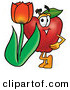 Stock Cartoon of a Happy Cute Red Apple Character Mascot with a Red Tulip Flower in the Spring by Toons4Biz