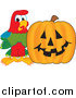 Stock Cartoon of a Macaw Parrot with a Halloween Pumpkin by Toons4Biz